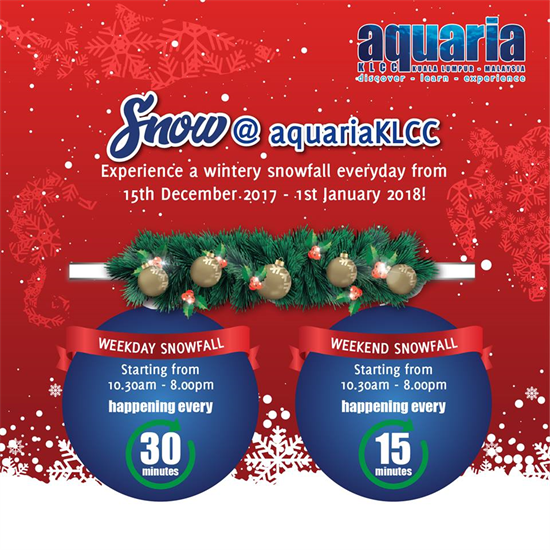aquaria-snowfall-550-550.png