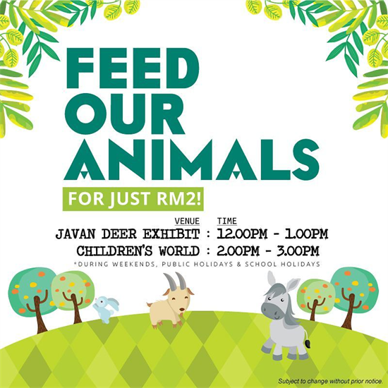 feed-zoo-550-550.png